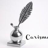 EL CARISMA Y LA SEDUCCIÓN EN LA ESCRITURA