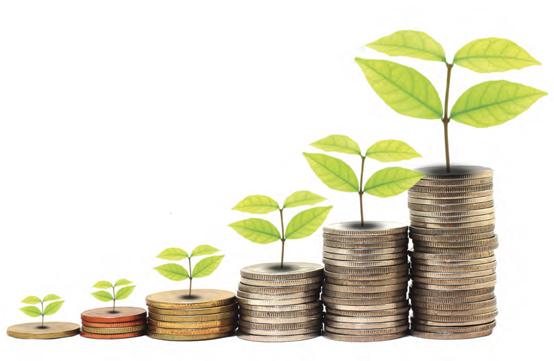 financiar-negocio-online